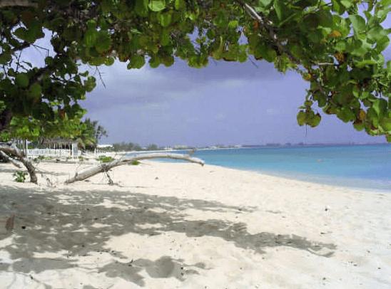 cemetery reef snorkeling grand cayman